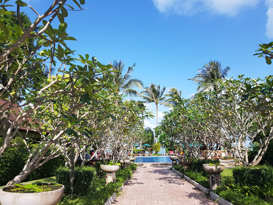Der Weg zum Swimming-Pool