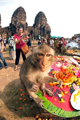 Festival Lopburi