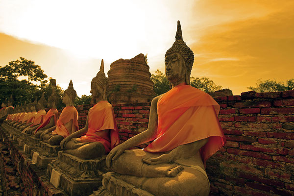 Die berühmten Buddha-Statuen in Ayutthaya. Bis heute eines der weltweit beliebtesten Fotomotive.