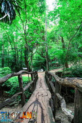 Holzbrücke im Nationalpark von Tak