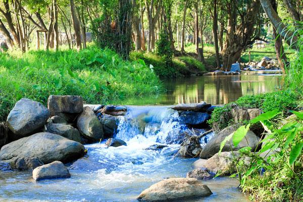 Kleiner Fluss von einem Wasserfall kommend in Chiang Mai