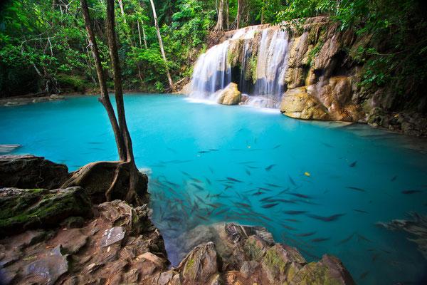 Wasserfall im Mangrovenwald Krabis