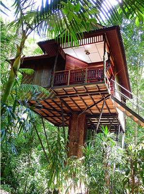 Das Backpacker treehouse im Khao Sok Nature Resort