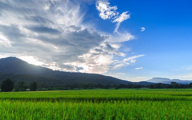 Landschaft Chiang Mai