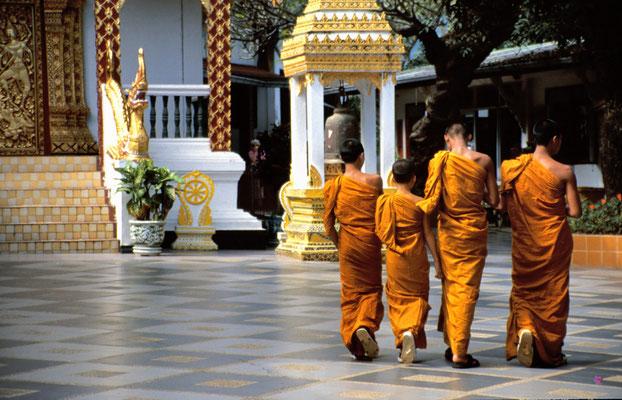 Mönche am Doi Suthep Tempel