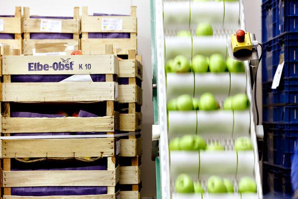 Fresh Factory verwendet ausschließlich die allerbesten Rohwaren