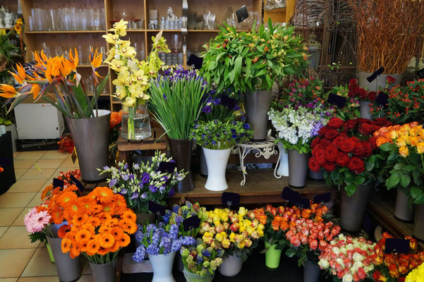 Valentinstag Blumen Rieger In Hof Bei Salzburg Und Faistenau