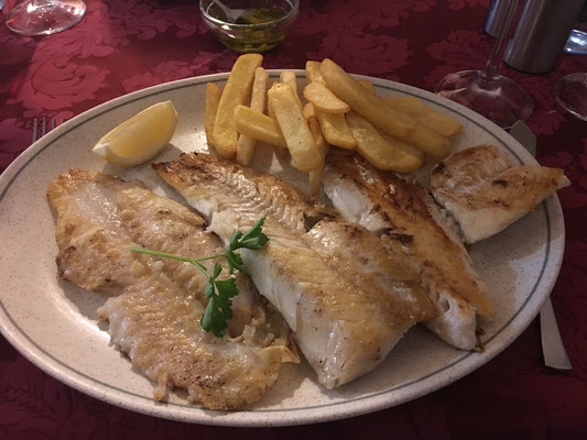 Fischteleller Cha Chat Torrox