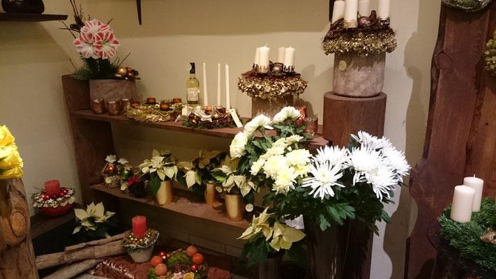 Weihnachten - Blumen Schönwalde-Glien