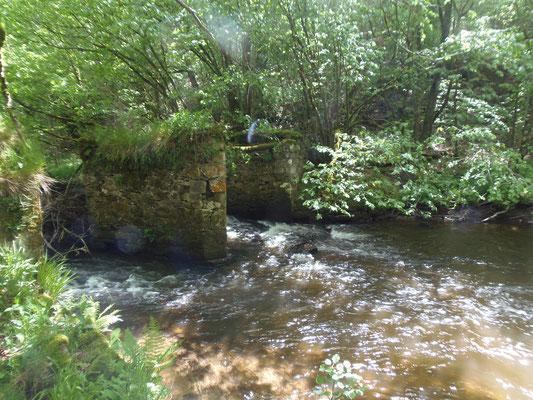 Une balade autour du Camping les trois sources 4 étoiles Lot Vallée de la Dordogne