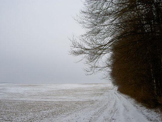 Höllrich, Franken, 2004