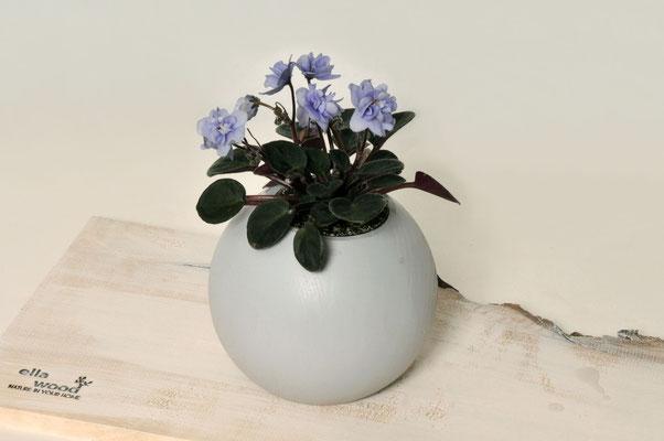 Pflanzenübertopf aus Buche farbig lackiert inklusive Glaseinsatz ca. Ø 4,5cm oder 6cm (auch als Vase geeignet)