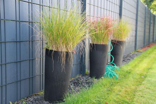 Belia's Home Ferienwohnung Gartenpflanzen
