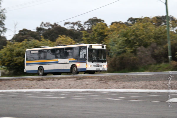 Ollis Schulbus / Ollis School bus