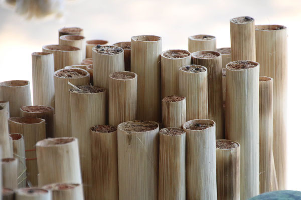Reis-Sticks