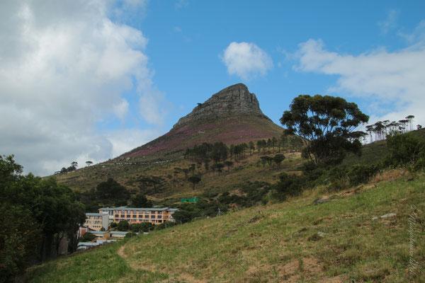 Signal Hill walk