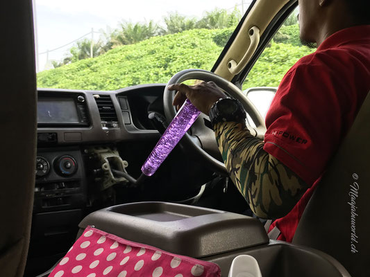 Der Fahrer der Transfers... Hier trifft Militär auf PINK;-)