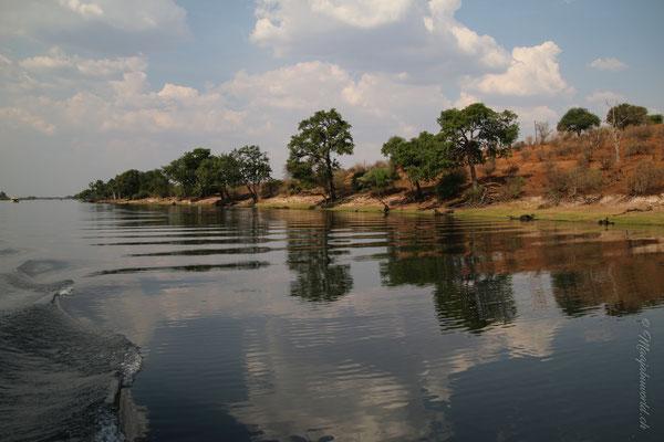 River Cruise Chobe NP