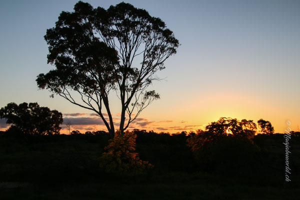 last sunset in Bendigo