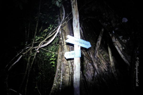 So findet man auch im Dunkeln den Weg! / Thats how you'll find in the dark the way.