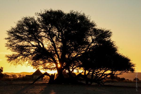Mit wunderschönem Sonnenuntergang! / Beautiful sunset!