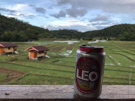 Ein Bierchen auf der Veranda! / A beer on the veranda.
