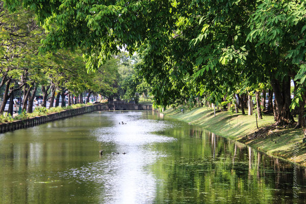 Dieser Kanal umrundet die Altstadt! / This channel goes around the old town of Chiang Mai.