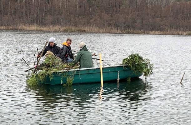 Frische Zweige werden an Steckstangen versenkt