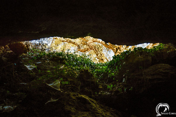 Exit from the cave.