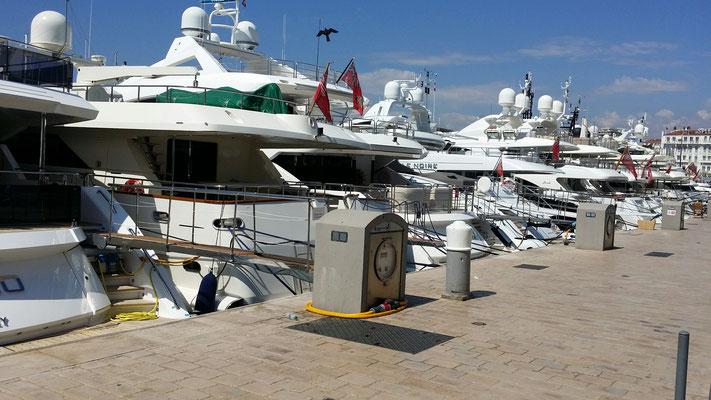 Hafen von Cannes - welches nehmen wir heute?