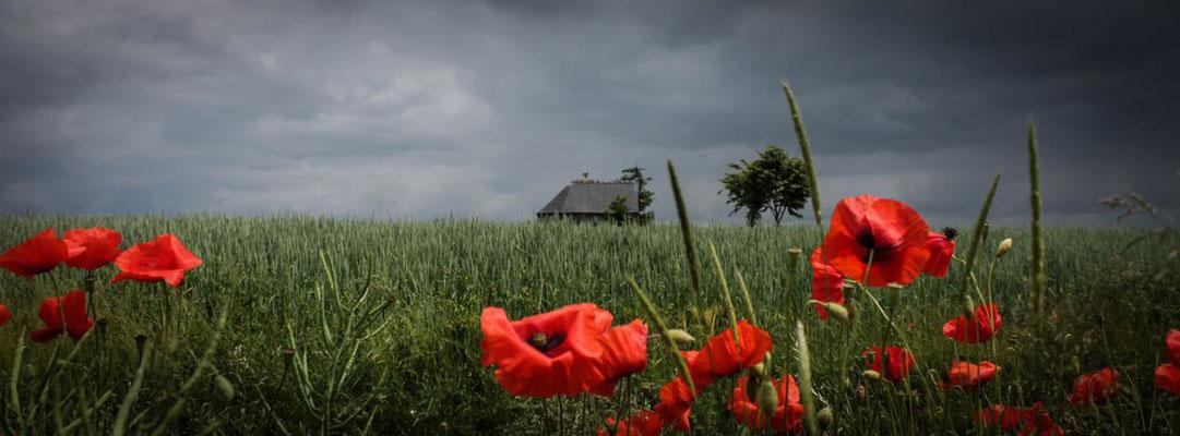 ©Emilie en Wallonie | Photographie | La Wallonie |