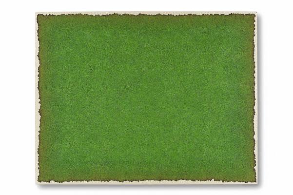 緑の白 91.0×116.5㎝(2014) oil on board
