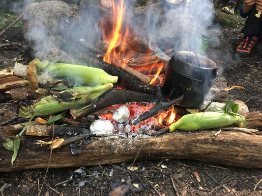 トウモロコシた鍋を載せた写真