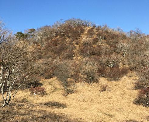 大蔵高丸を過ぎた登山道