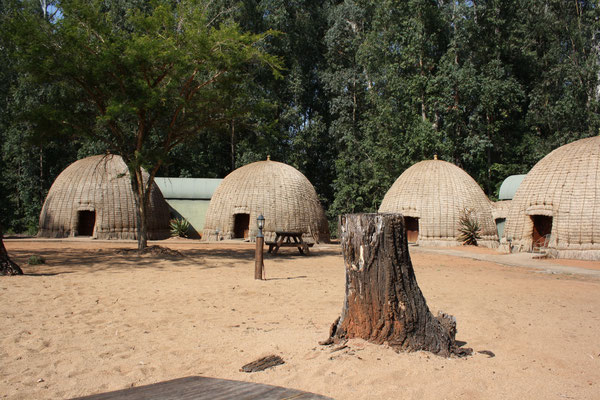 beehives in Mlilwane