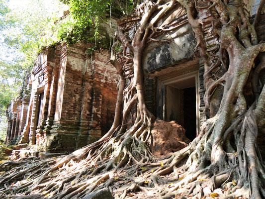 Kambodscha, Koh Ker