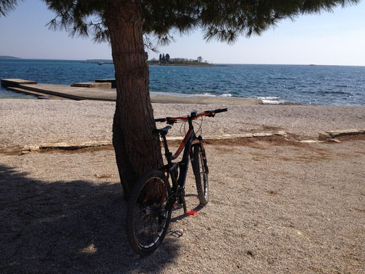 MTB at the seaside