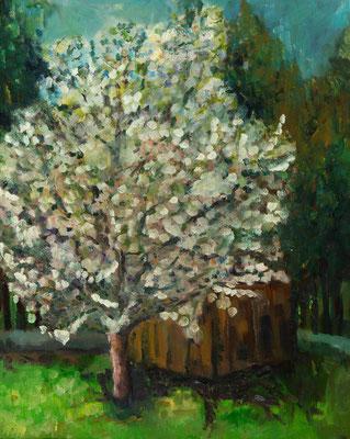 """""""Die Zwetzschge in meinem Garten"""", Öl auf Hartfaser, gerahmt, 47x38cm, 2018"""