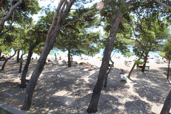 Апартаменты в Промайне, МакарскАпартаменты в Промайне первый ряд от моря, отдых с детьми, Макарска ривьера, Хорватияа ривьера, Хорватия