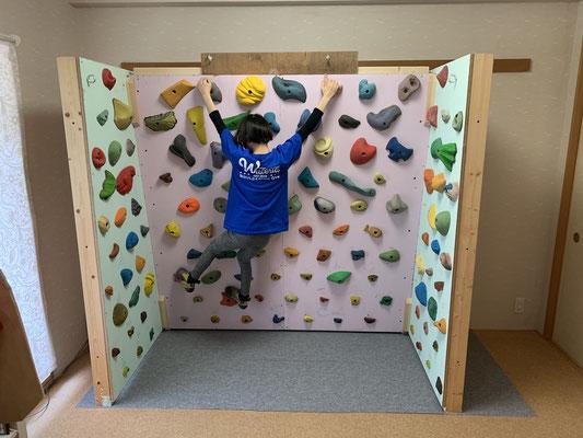 トレーニング ボルダリング 自宅 ボルダリングの家トレは体幹が効果的!野中生萌も実践の体幹トレーニング