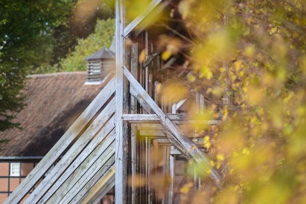 Rheine Bentlage Saline im Herbst