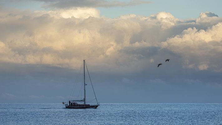Segelboot vor Morgenhimmel