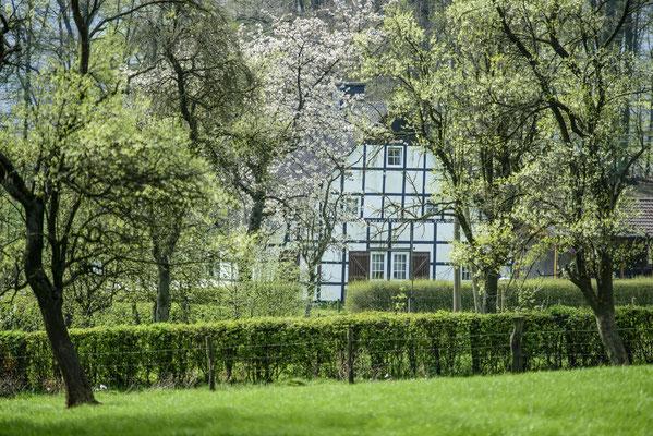 Frühling im Osnabrücker Land