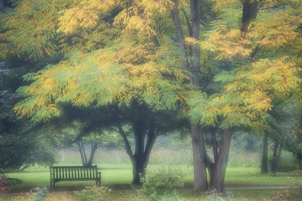 Rheine Herbst in Bentlage