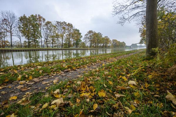 Rheine Altenrheine Herbst am DEK