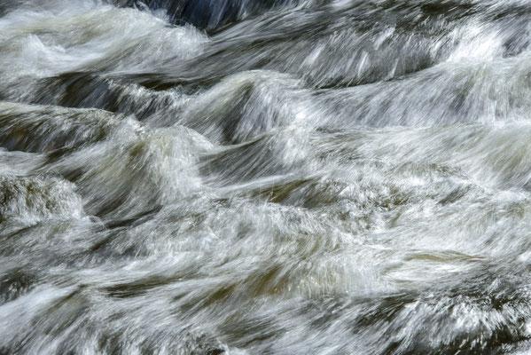 Wilde Wasserwelt (Bodetal).