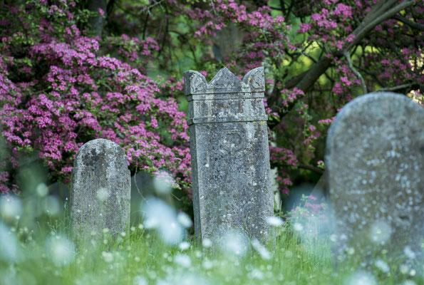 Friedhof in Altenkirchen