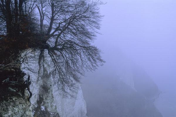 Königsstuhl im Winter