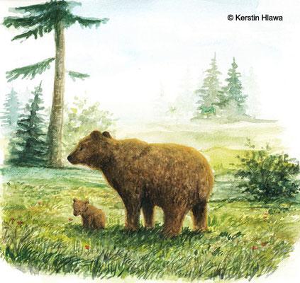 Bären, Gouache, 2010