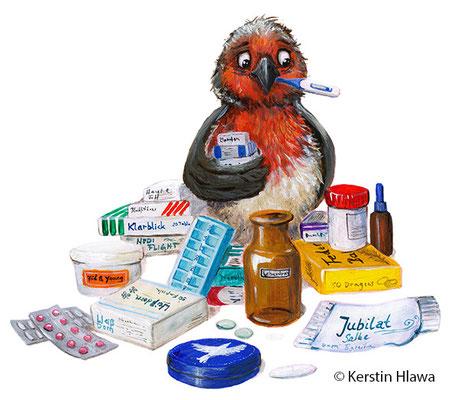 Medizinvogel, Acryl, Coppenrath, 2016